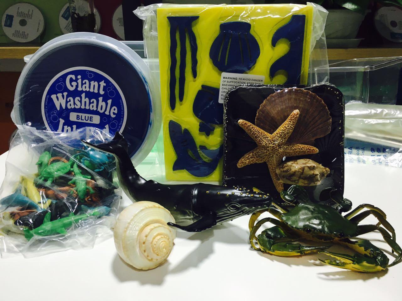 海洋动植物认知教具