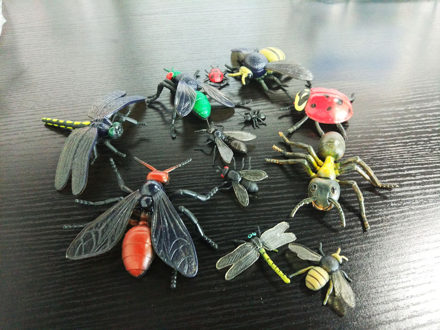 昆虫仿真模型